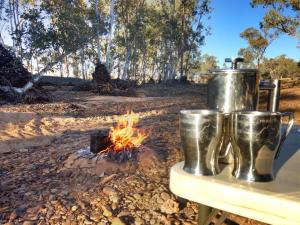 Nothing beats a fresh cuppa whilst camping